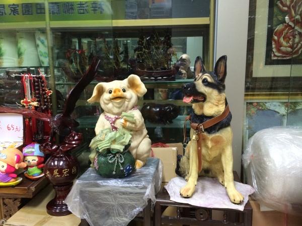 Der Deutsche Schäferhund und das Schwein, gibts alles....